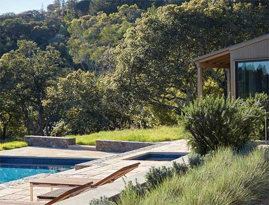 Shallow terraces transition the house gently into the hillside, while a mix of Lavender, Blue Oat Grass and Rosemary bring texture and fragrance near the pool.