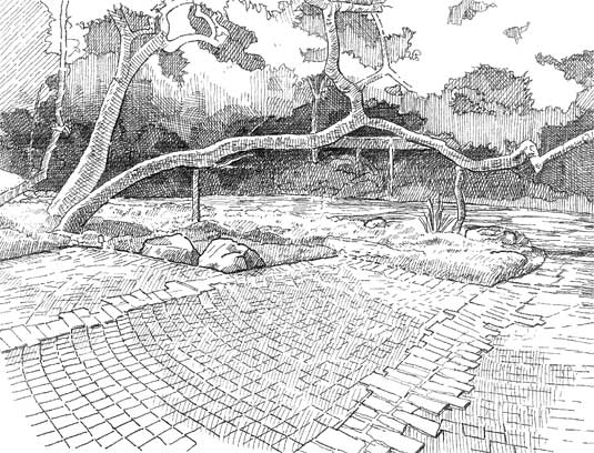 Hand-sketch of a native sycamore (Platanus racemosa) branch that extends out 30' over a garden bed. This sketch shows the prophyry sets and granite ballast stone edging used to mark two parking spaces.
