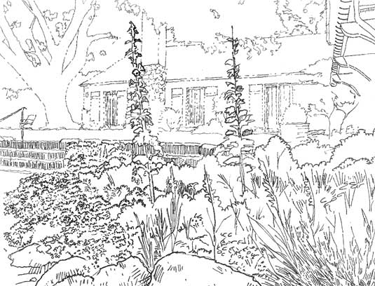 Hand-sketch of the perennial bed, stone steps and lawn terrace behind the George Washington Smith designed residence.