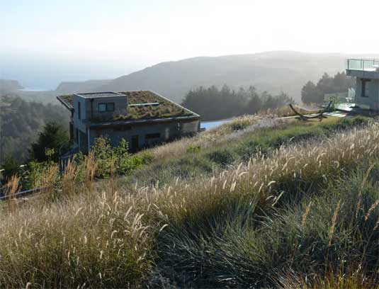 Drifts of grasses and perennials weave the design into natural landscape.