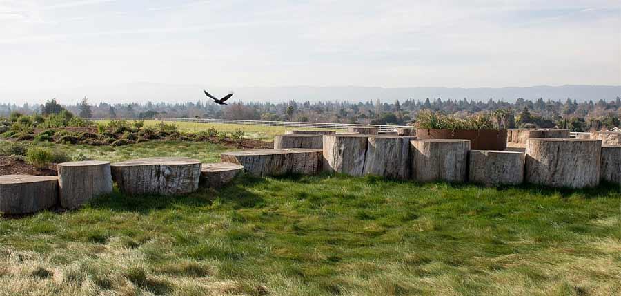 Facebook MPK20 Menlo Park, CA CMG Landscape Architecture