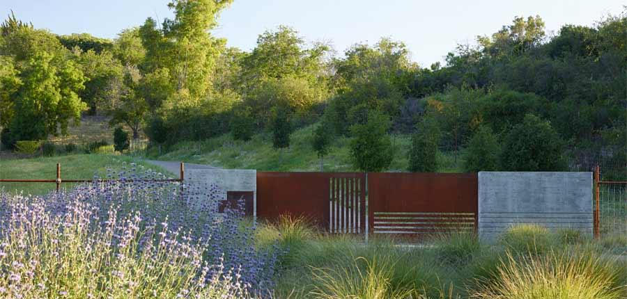 Law Estate Vineyards Paso Robles, CA Lutsko Associates