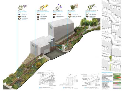 PARCELS 4 & 5 PROPOSAL The planting palette for each parcel is in response to site-specific characteristics and reacts to topography, sun exposure and soil conditions. Each parcel incorporates annuals and perennials that provide seasonal beauty and support pollinator habitats.
