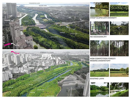 The existing site conditions reveal a corridor that is rich in natural beauty and tranquil spaces. However, strict historical protection of the channel has resulted in an overgrown forest structure lacking in species diversity and accessibility.