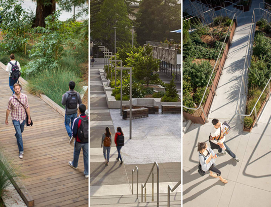 The multitude of access points and experiences are core to the landscape. Planting as a counterpoint to the open plaza humanizes and defines circulation routes.