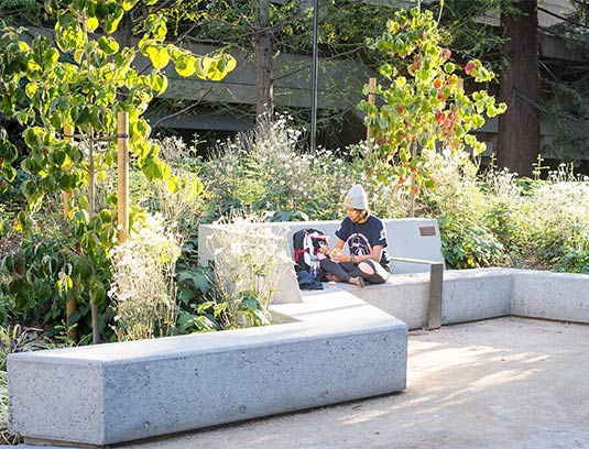 A garden room affords a moment of respite and is a memorial to a beloved student.