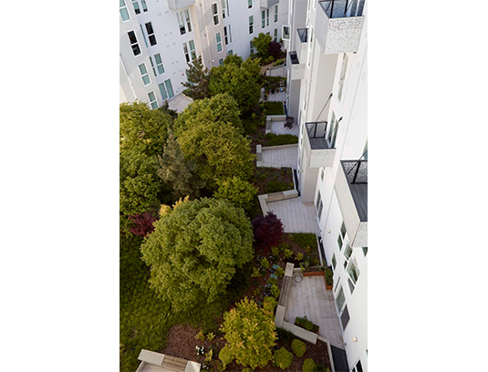 Succulent patio gardens provide visual excitement for residents above and below.