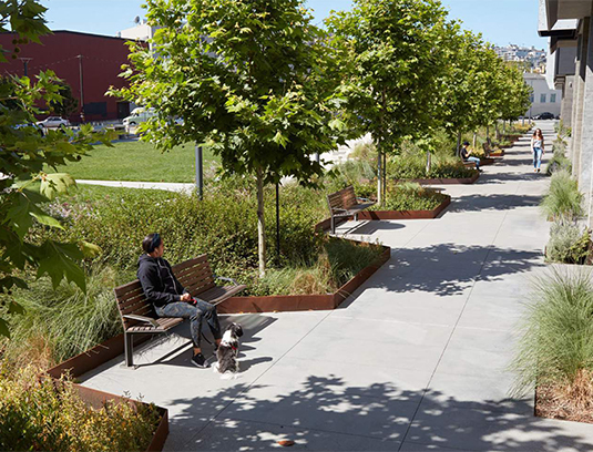 Cortan steel lined rain gardens provide separation between the public park and private residences.
