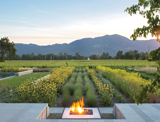 Linear bands of perennials and grasses stretch out to the surrounding vineyard. Rows of vines echo the pattern at a distance.
