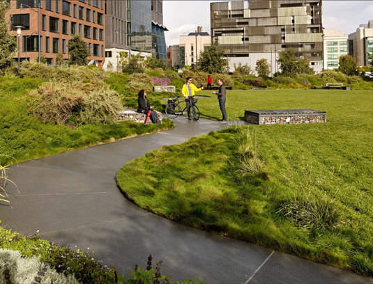 A path traces the perimeter of the multi-function lawn accommodating strolling, dog-walking and a loop for young kids to practice biking. Here, the transition to the native habitat zone is marked by gabions and an informal fescue edge.