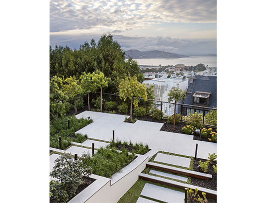 The Bay View. The openness of the metal grid fence further connects the garden and house to the bay and views to Angel Island. A variety foliage color and texture provides interest throughout the seasons.