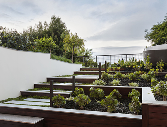 Back Garden. Access to the lower level gym is integrated into the garden with gently rising planted terraces. The transparency of the metal fence creates an infinity edge to the property.