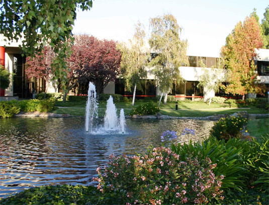 Existing Condition – One of the existing courtyards with minimal employee amenities and high water use trees, lawn and water features, all using potable water and inappropriate for a drought-prone climate.