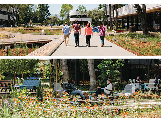 The LinkedIn Middlefield campus features a variety of outdoor spaces designed for gathering, recreation, and quiet contemplation, and to encourage chance encounters among its users.