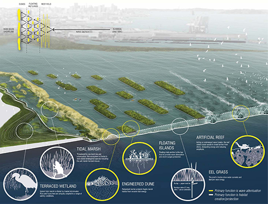 Floating wetlands are among the strategies that allow the site to respond and adapt to changes over time. The ability to iterate upon technologies, adjust public spaces, and monitor ecological landscape elements as they develop over time, is an important aspect to all site and building systems.