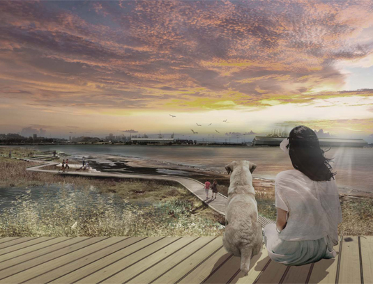 Direct and intuitive access to a major new park space—the Big Green and Shoreline, enables these signature places to reinforce the regional network of public waterfront parklands.