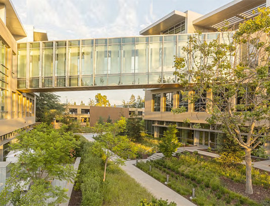 Netflix Albright Campus. Bridge gardens with access between buildings at upper level and garden level.